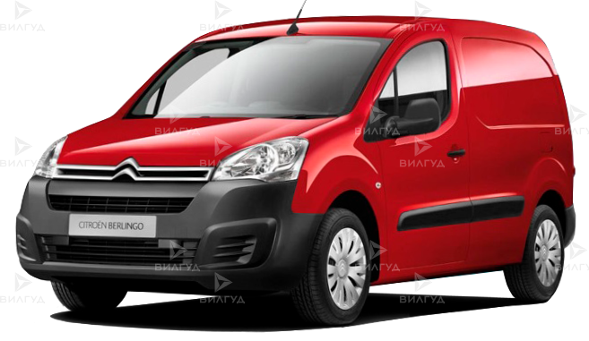 Диагностика ошибок сканером Citroen Berlingo в Новороссийске